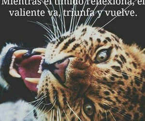 frases, fuerza, and positiva image