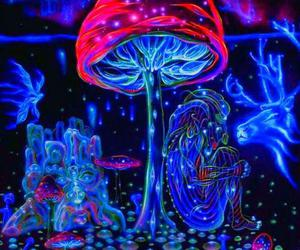 mushroom and psychedelic image