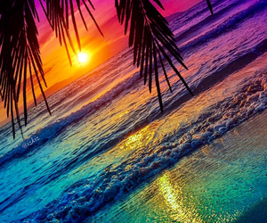 beach, colorful, and palm tree image