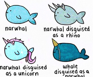 narwhal, unicorn, and whale image