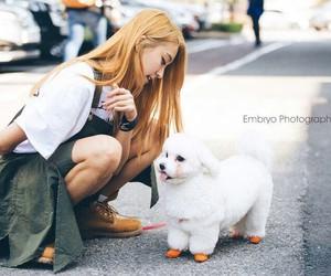 bora, kpop, and yoon bora image