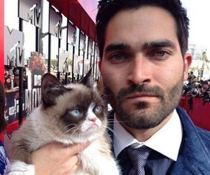 teen wolf, tyler hoechlin, and grumpy cat image