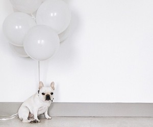 balloon, white, and cute image