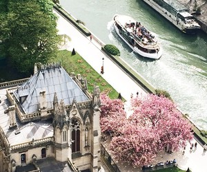 bloom, cathedral, and cherry blossom image