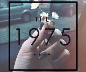 flowers, the 1975, and 1975 image