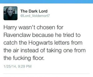 accurate, harry potter, and lol image
