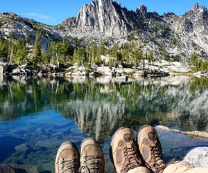 adventure, forest, and hiking image
