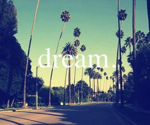Dream, california, and palms image