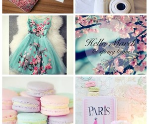 beautiful, macarons, and spring image