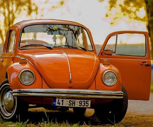 beetle, fusca, and orange image