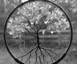 tree, black and white, and Dream image