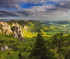 beauty, slovakia, and trees image