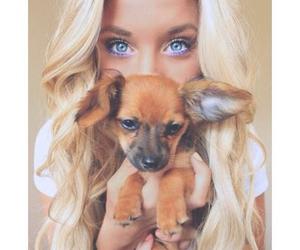 dog, girl, and blonde image