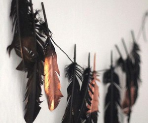 feather, black, and indie image