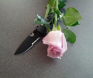 rose and knife image