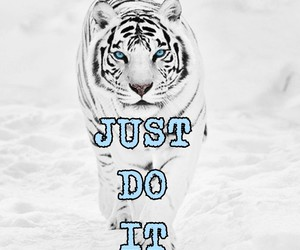 do, tiger, and it image