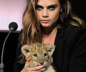 cara delevingne, model, and tiger image