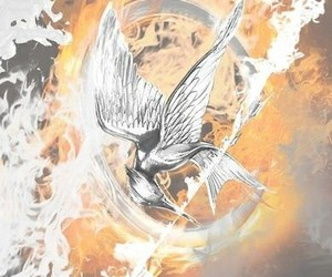 background, book, and hunger games image