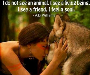 animal, soul, and friends image