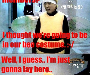bee, funny, and tvxq! image