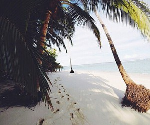 beach, bff, and exotic image