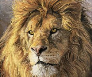 brave, drawing, and lion image