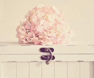 flowers vintage image
