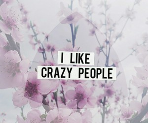 crazy, flowers, and people image