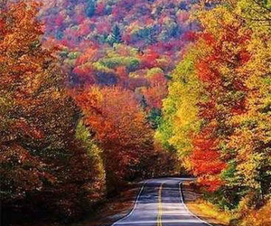colourful, landscape, and nature image