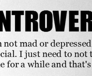 introvert and alone time image