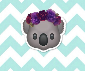 Koala, emoji, and wallpaper image