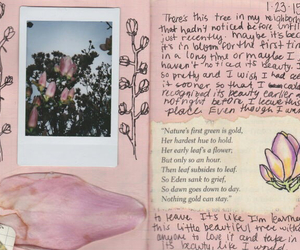 pink, flowers, and journal image