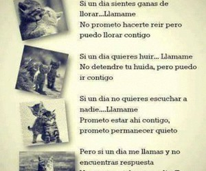 amigos, frases, and friendship image