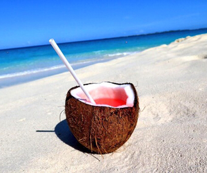 summer, beach, and coconut image