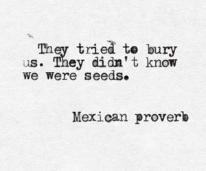 quote, black and white, and proverb image