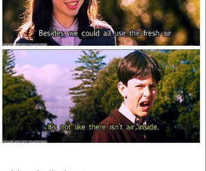 funny, narnia, and quote image