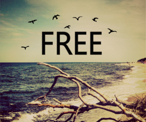 free, freedom, and beach image