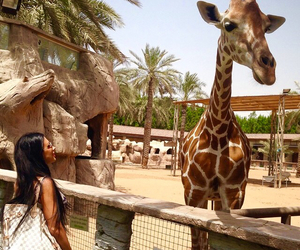 brunette, Dubai, and girls image