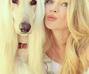 dog, Lindsay Ellingson, and Victoria's Secret image