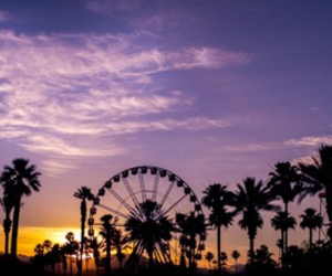coachella, palm trees, and summer image