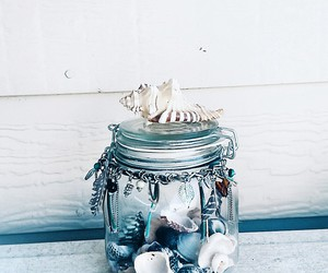 beach, blue, and shell image