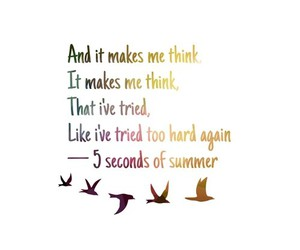 bird and 5sos image