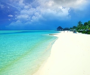beach, beautiful, and Dream image