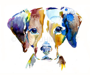 art, color, and dog image