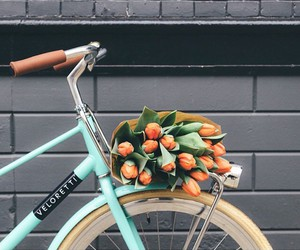flowers, bike, and tulips image