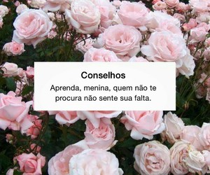 conselho, frases, and status image