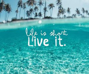 summer, beach, and life image