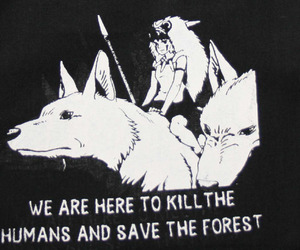 wolf, animals, and anime image