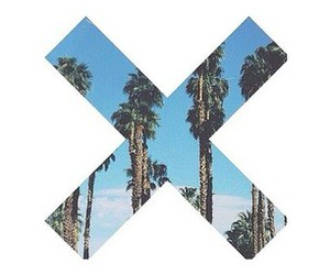 palm trees, tumblr summer, and theme divider image