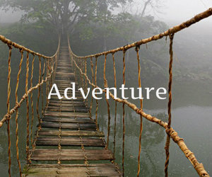 adventure, black and white, and brigde image